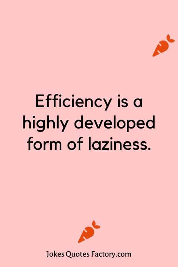 Efficiency is a highly developed form of laziness.