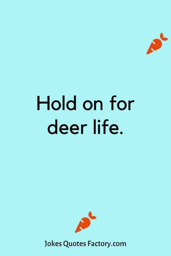 Hold on for deer life