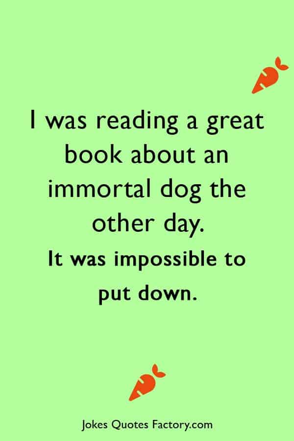 I was reading a great book about an immortal dog the other day. It was impossible to put down. - dark humor jokes