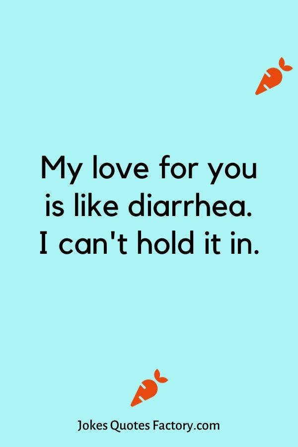 My love for you is like diarrhea