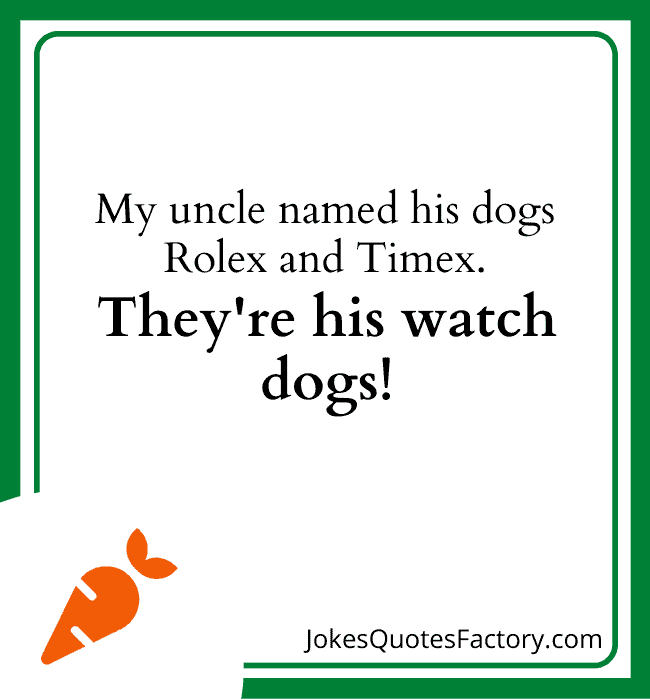My uncle named his dogs Rolex and Times, they're his watch dogs