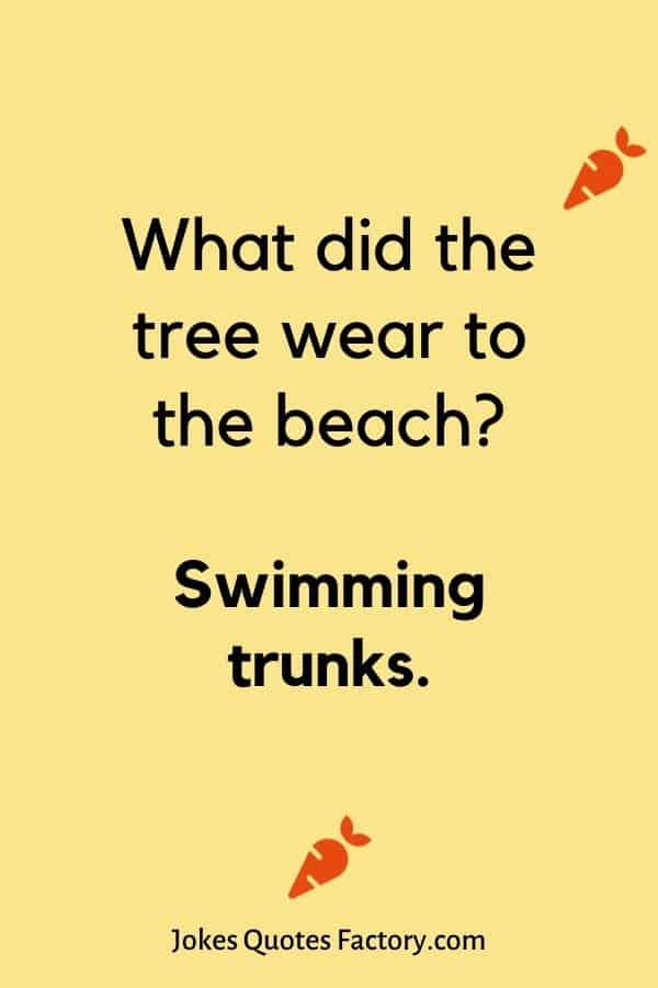 What did the tree wear to the beach