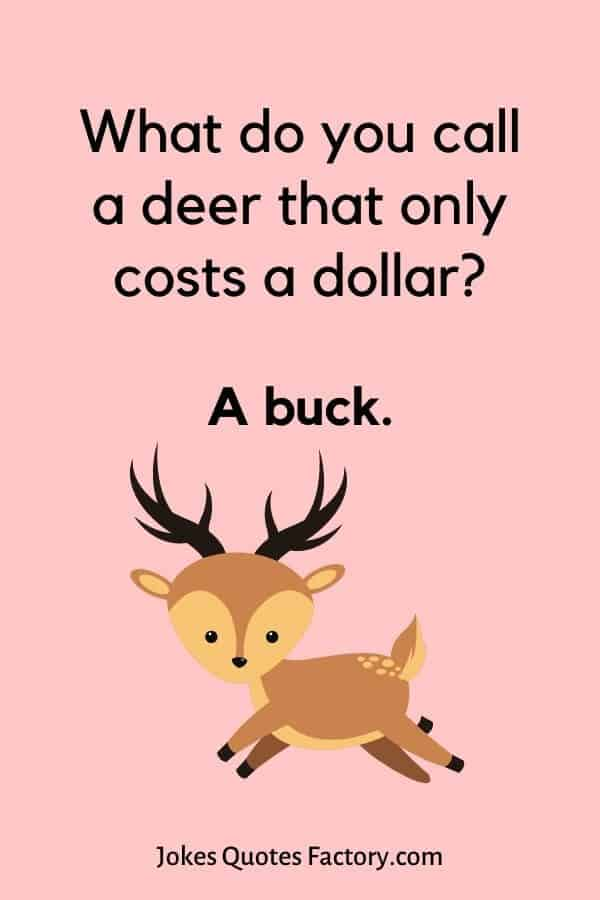 What do you call a deer that only costs a dollar? A buck