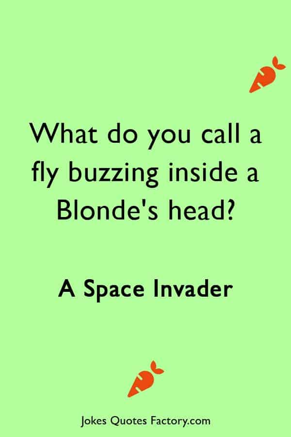 What do you call a fly buzzing inside a Blondes head