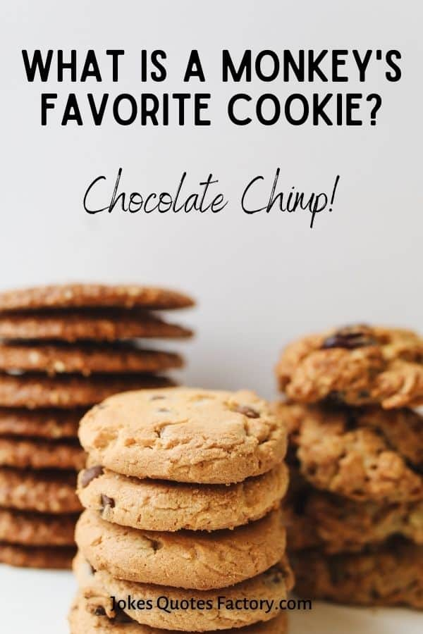 What is a monkey's favorite cookie