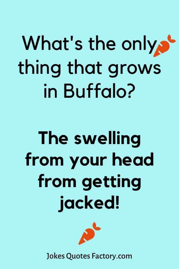 What's the only thing that grows in Buffalo