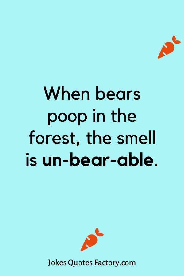 When bears poop in the forest, the smell is un-bear-able