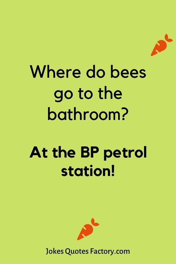 Where do bees go to the bathroom