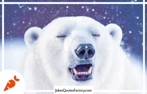 Where does a polar bear keep his money