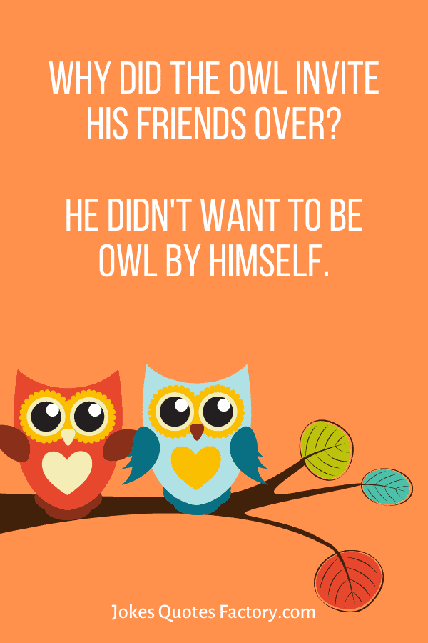 Why did the Owl invite his friends over