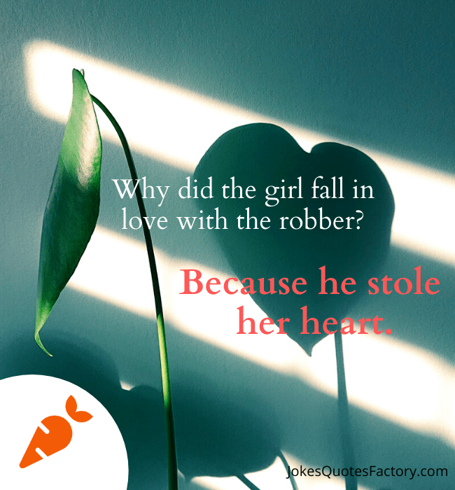 Why did the girl fall in love with the robber
