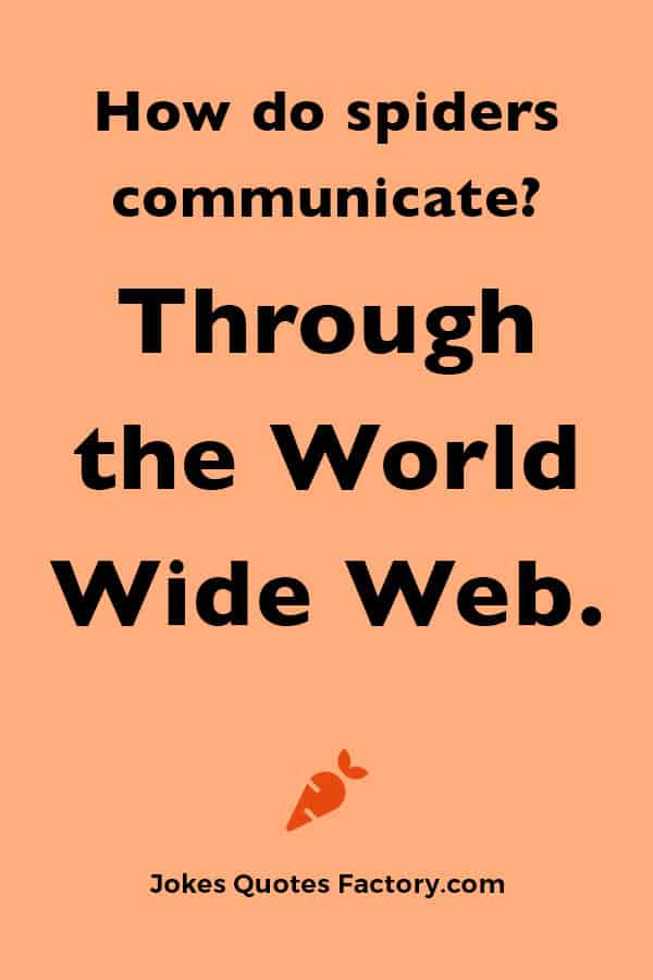 How do spiders communicate?  Through the World Wide Web.