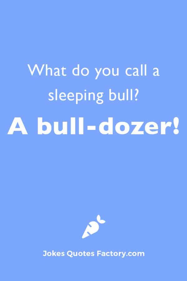 What do you call a sleeping bull?  A bull-dozer!