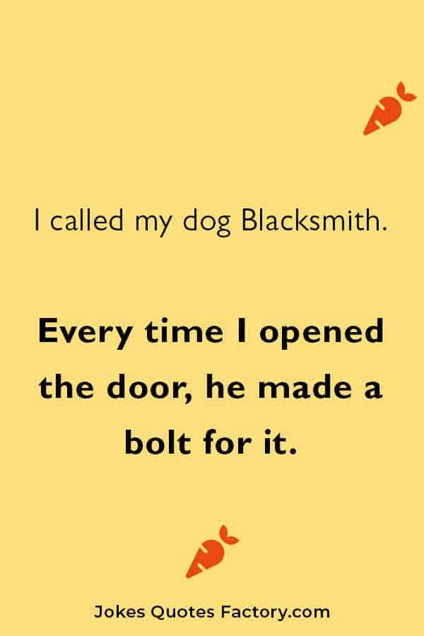 clever and funny dog jokes