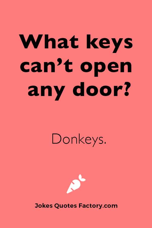 What two keys can't open any door?