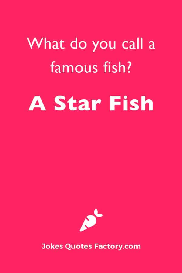 What do you call a famous fish? A star fish.