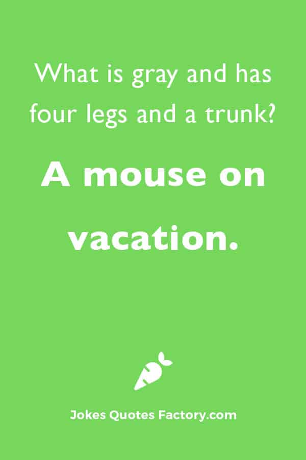 What is gray and has four legs and a trunk?  A mouse on vacation.