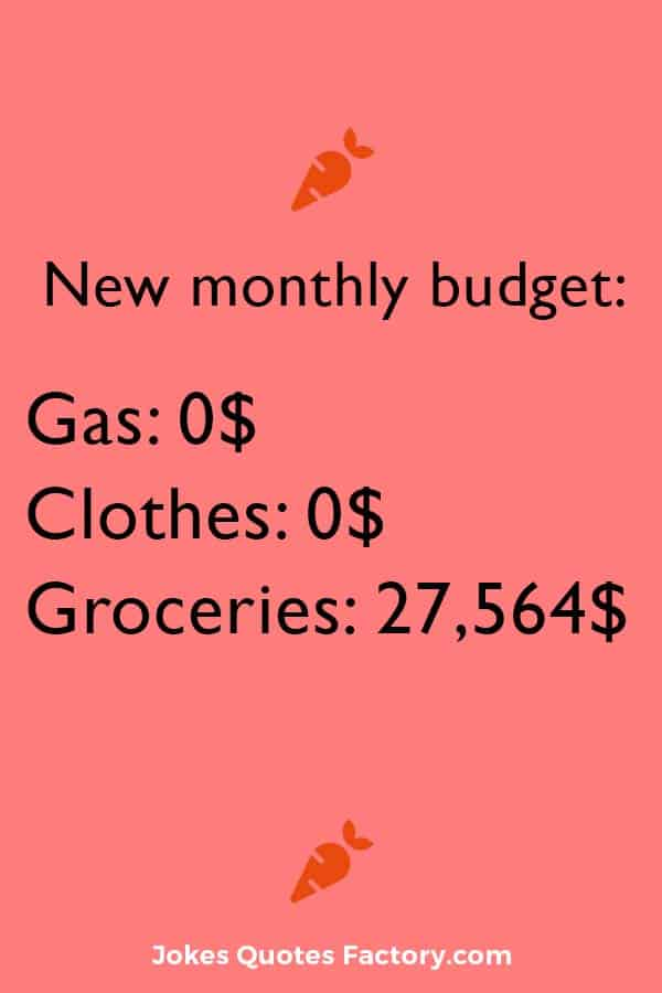 New monthly budget - pandemic edition
