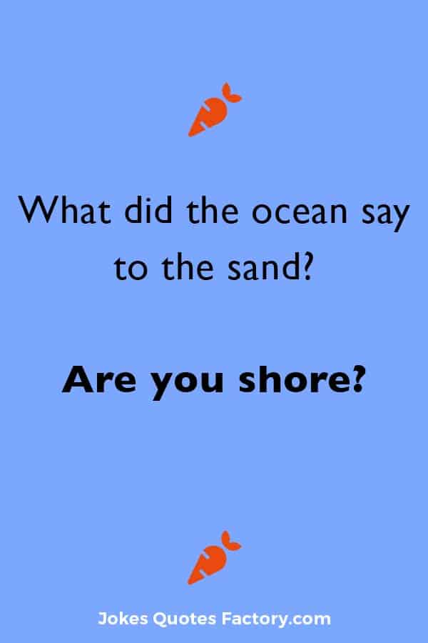What did the ocean say to the sand? Are you shore?
