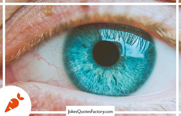What do you call someone who dedicates their life to the study of the eye? Pupil.