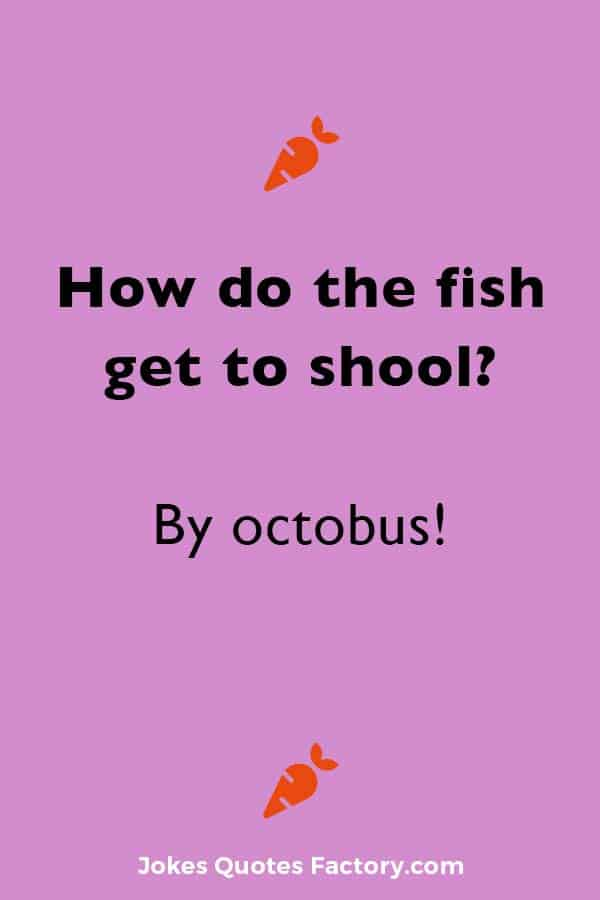 How do the fish get to shool? By octobus!