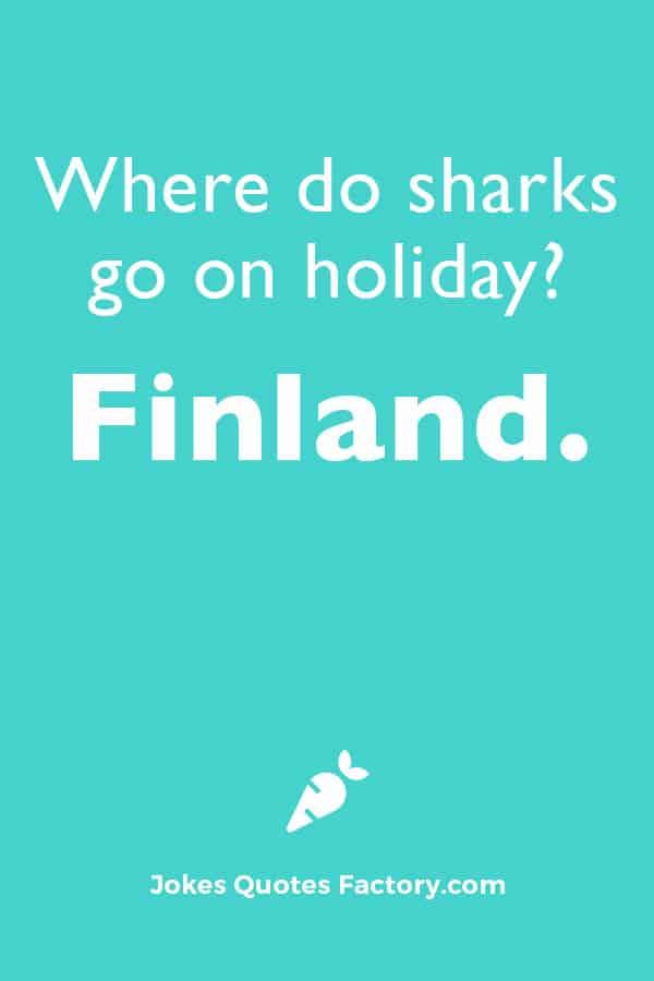 Where do sharks go on holiday?